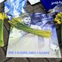 Trauer um den argentinischen Fussballer Emiliano Sala, der bei einem Flugzeugabsturz ums Leben gekommen ist.