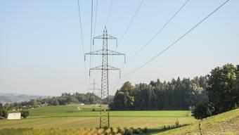 Die 220-kV-Leitung im Reusstall soll auf 380 kV erweitert werden.