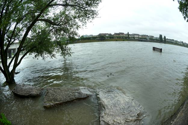 Der Strand unterhalb der Schwarzwaldbrücke ist zurzeit überflutet.