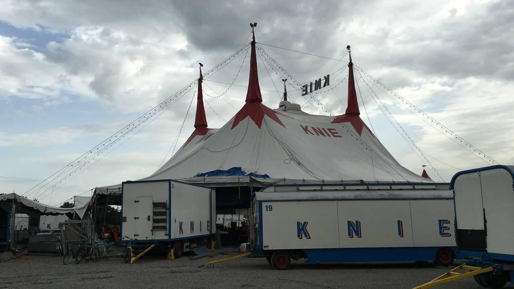 Zirkus Knie: Das Zelt steht