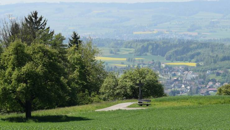 Eine Sitzgelegenheit mit schöner Aussicht? Bänkli sind nicht selbstverständlich. Hier ein «Bankgeheimnis» aus Oberwil-Lieli.