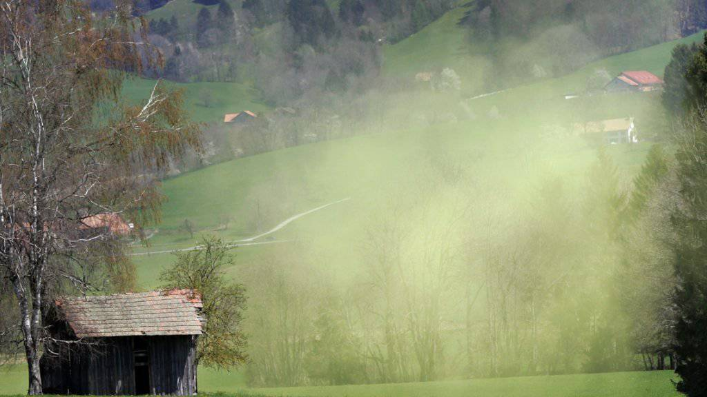 Die Intensität der Pollensaison war 2018 regional sehr unterschiedlich. Deutlich kürzer war die Pollensaison in Genf und Neuenburg. (Archiv)