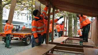 Flüchtlinge sollen Arbeiten wie hier Asylsuchende für den Aarauer Rüeblimärt. Carla Stampfli