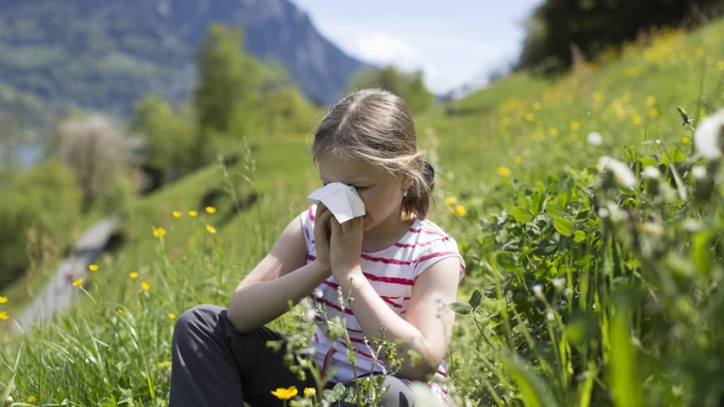 Allergikerinnen und Allergiker machen gemäss MeteoSchweiz mehr als 20 Prozent der Bevölkerung aus. (Symbolbild)