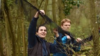 Masterstudentin Lilla Lovász und Forschungsleiter Valentin Amrhein kontrollieren die Fangnetze für die Zugvögel.Juri Junkov
