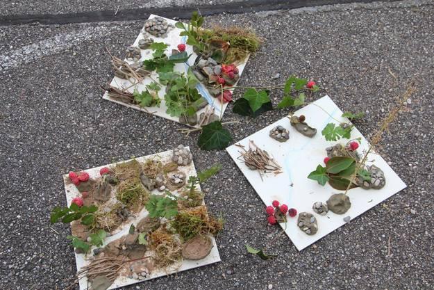 Die optimalen Landschaften für Wiesel aus Sicht der Schülerinnen und Schüler.