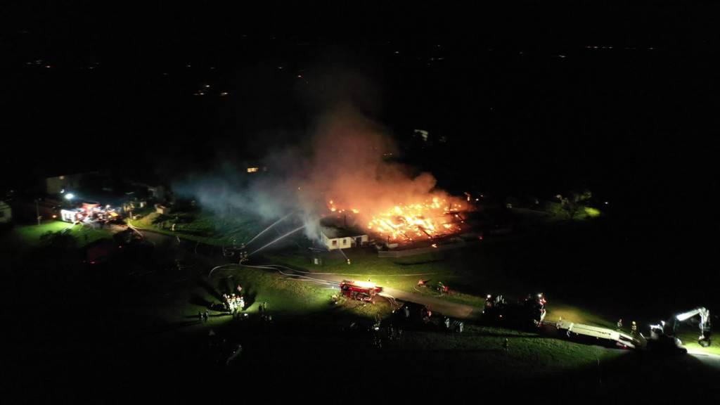 Tiere gerettet: Scheune in Heldswil brennt nieder