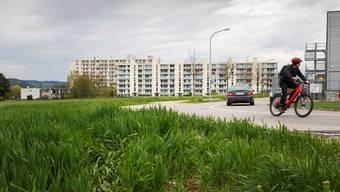 Links weg wird die Erschliessungsstrasse zu den Wohnblöcken im Grederhof und zum Bahnhof Bellach führen.