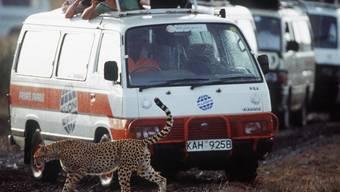 Bei einem Angriff von Unbekannte ist eine Schweizerin im kenianischen Shaba-Nationalpark schwer verletzt worden (Symbolbild)
