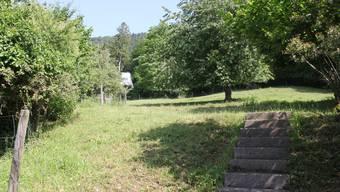 Die Überbauung der Parzelle wurde trotz Waldnähe vom Gemeinderat genehmigt.
