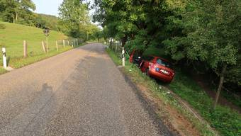 Die Lernfahrerin landete im Graben, weil sie laut eigenen Aussagen einem Lastwagen ausweichen musste. Verletzt wurde niemand.