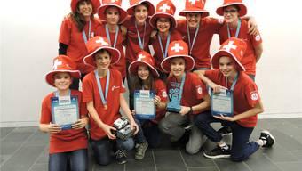 Reisen mit ihrem Roboter ans World Festival in die USA: Das Team «mindfactory».