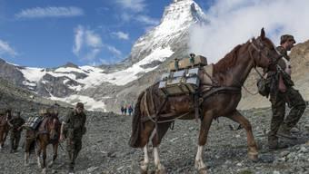 Die Trainkolonne 10 der Schweizer Armee beim Aufstieg