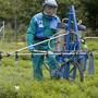 Seit den 70er-Jahren wird Chlorothalonil in der Landwirtschaft eingesetzt. Nun prüft der Bund ein Verbot des Pflanzenschutzmittels. Auch im Trinkwasser von Obersiggenthal ist es neu nachgewiesen. (Symbolbild)