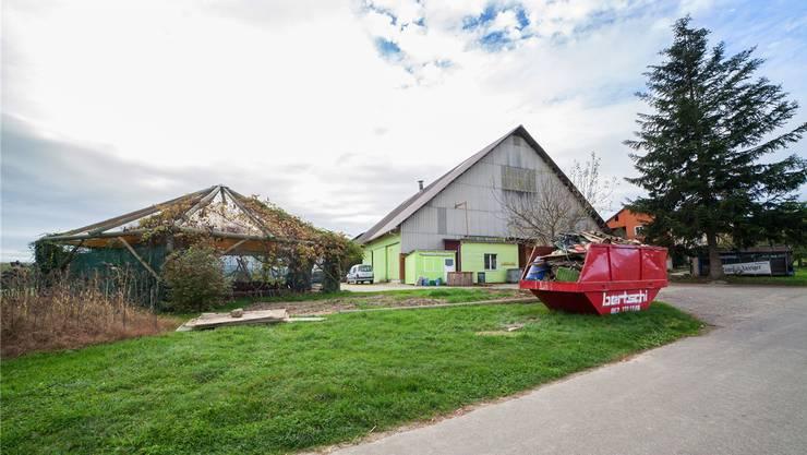 Die Entrümpelung ist noch im Gang: Der Haldenhof soll schon bald wieder viel Landwirtschaft beheimaten.