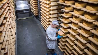 Während die geförderte Milchmenge sinkt, nimmt die Produktion von Käse zu.