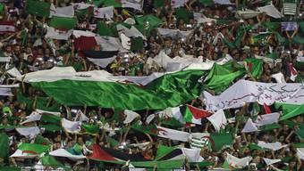 Algeriens Sieg über die Elfenbeinküste am Afrika-Cup wurde in Paris von den algerischen Fans nicht nur friedlich gefeiert