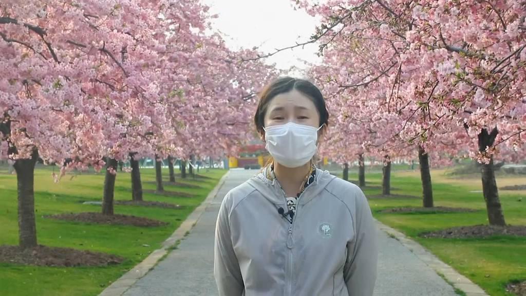 Chinas Blütenpracht - dieses Jahr nur online