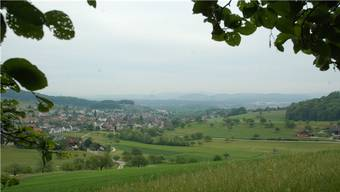 Küttigen will mit Densbüren, Erlinsbach und dem Kanton zusammen den Forstbetrieb Jura schaffen.