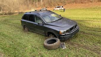 Ein alkoholisierter Autofahrer landete nach einem Selbstunfall im Wiesland.