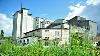Die ehemalige Futterfabrik ist baufällig, der Mietvertrag läuft 2020 aus, doch die Chancen für einen KiFF-Neubau auf dem gleichen Grundstück sind intakt.