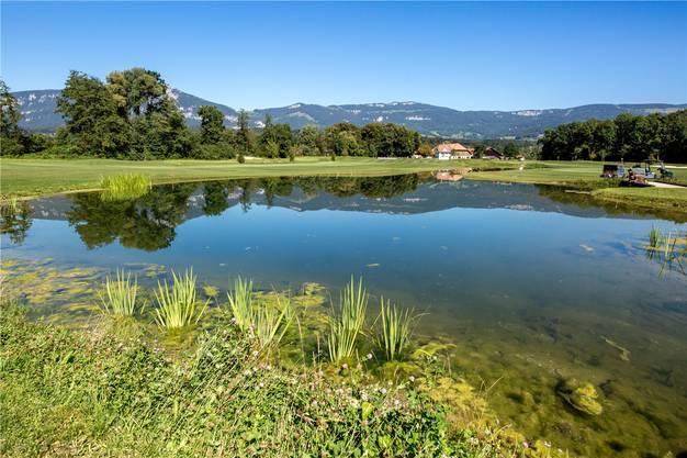 Rund um den neu angelegten Teich mit der kleinen Insel fliegen jetzt die Golfbälle durch die Luft.