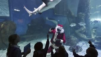 Die Kinder mögen Santa Claus auch mit Fischen statt mit Rentieren.