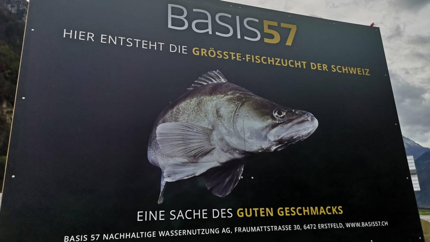 Schweizweit grösste Fischzucht in Uri