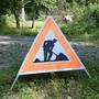 Aufgrund der letztjährigen Trockenheit und Hitze müssen in Winterthur weitere Bäume gefällt werden. (Symbolbild)