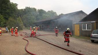Feuerwehrübung Geroldswil-Oetwil