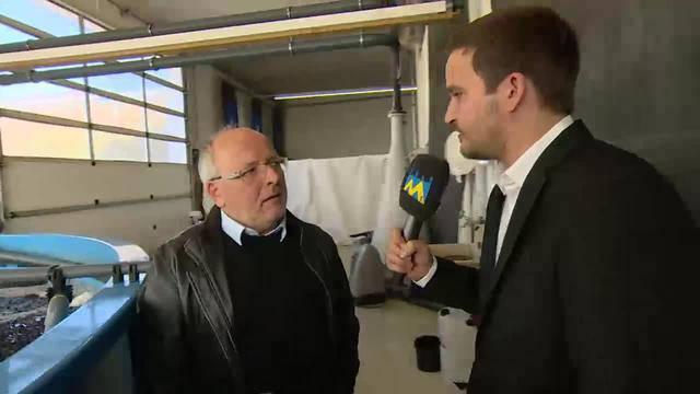 Bernhard Kaufmann: «Fisch ist eine Alternative in der Landwirtschaft» (19.11.2015)