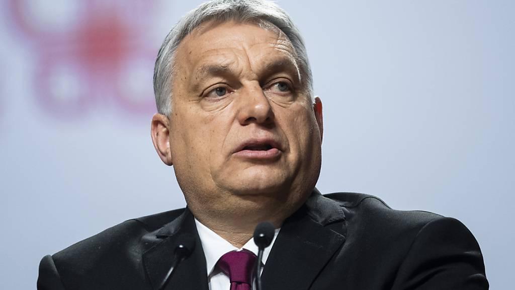 Sieben Gesetze des Orban - Regierungschef lässt Tafel anbringen