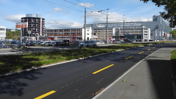 Vor dem Autohändler Auto Zürich West wurden acht Bäume gefällt.