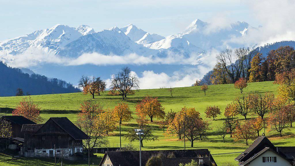 In der Schweizer Landwirtschaft ortet die OECD noch viel Potential für eine Erhöhung der Produktivität (Archiv).