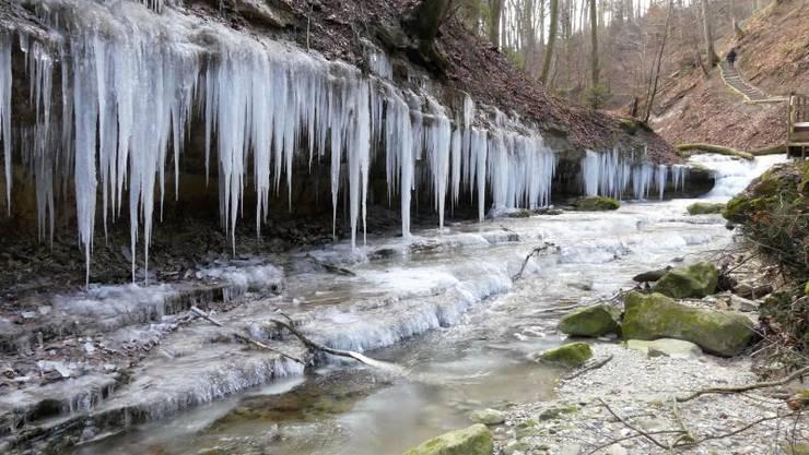 Das Sörikertobel in Muri ist bei winterlichen Temperaturen fast ein Märchenland.