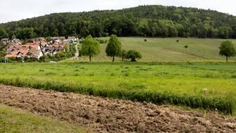 ie bürgerliche Mehrheit im Kantons- und Regierungsrat weigerte sich, die vom Volk angenommene Initiative umzusetzen.