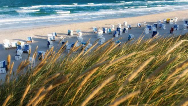 Wer an Sylt denkt, denkt an Strandkörbe. Die kleinen nummerierten «Häuschen» schützen vor dem starken Wind. Und der Sonne. Foto: Thomas Linkel/laif