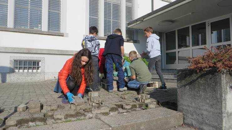 Das Schulareal in Boniswil wird bald nicht mehr von Schülern aus Hallwil besucht. (Symbolbild)