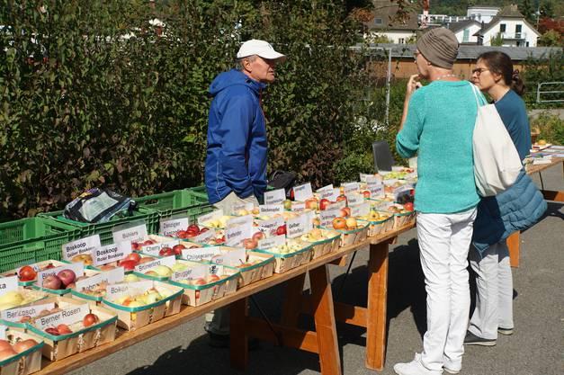 Über 70 Sorten Äpfel aus der nahen Umgebung konnten gezeigt werden.