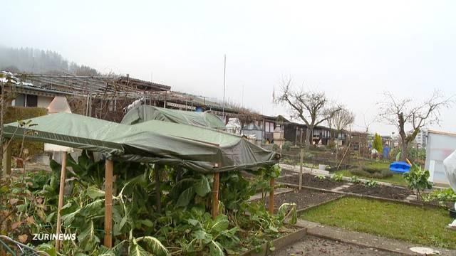 Schrebergärten werden ausgeraubt