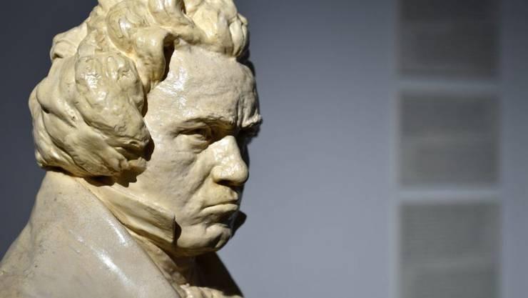 Eine Beethoven-Büste im zum Museum umfunktionierten Beethoven-Haus. Am Wochenende ist Eröffnung.