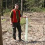 Setzt derzeit eifrig neue Bäume: Fabian Bugmann, Förster in Mettauertal.