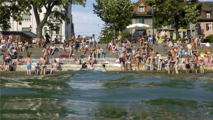 Rheinufer im Sommer