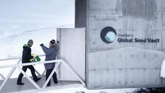 Eine Box mit neuen Samen wird in den Staatguttresor auf Spitzbergen gebracht. (Archiv)