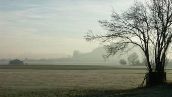 Landschaft zwischen Schafisheim und Staufen mit dem Staufberg im Hintergrund.