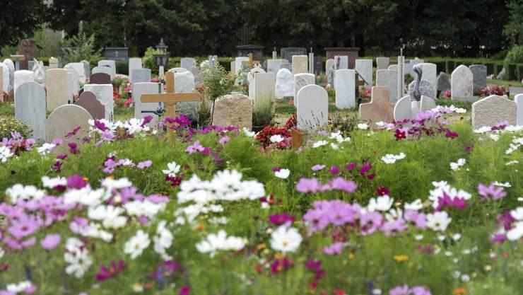 200 000 Menschen sind auf dem grössten Friedhof der Schweiz beerdigt, unter ihnen Berühmtheiten wie der Historiker Jakob Burckhardt oder der Philosoph Karl Jaspers. Auf dem 50 Hektaren grossen Gelände ist trotzdem genug Platz für Spaziergänger und Jogger. Sogar Biken ist hier erlaubt. Nur über die Rehe ärgern sich die Friedhofsgärtner zuweilen auf. 2015 verursachten sie mit ihren Fressattacken einen Schaden von 50 000 Franken.