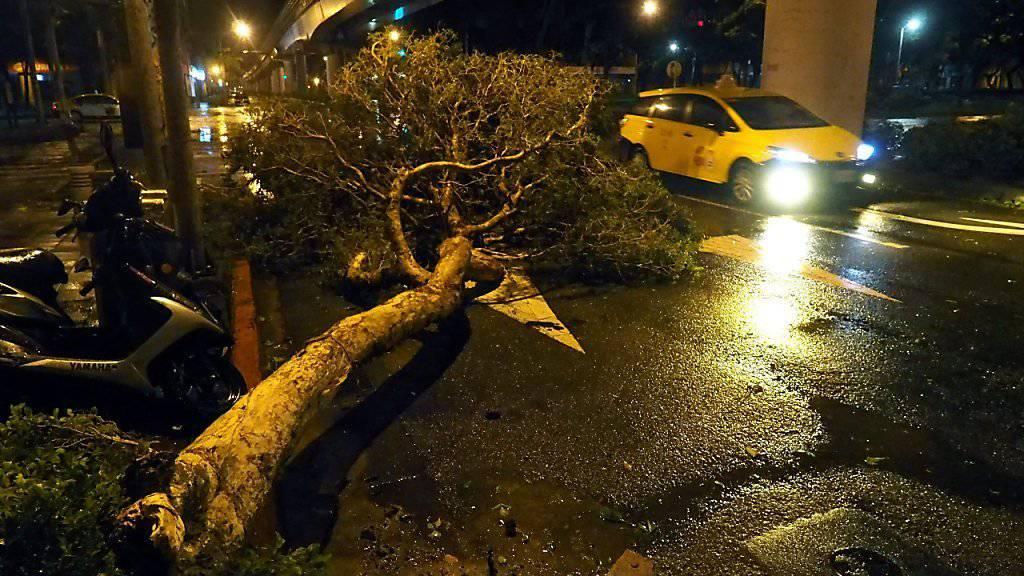 Taifun «Dujuan» fällt Baum auf Strasse in der taiwanesischen Stadt Taipeh