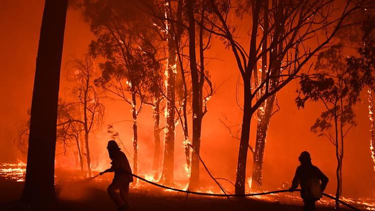 Australische Feuerwehrleute kämpfen gegen die Flammen zahlreicher Buschbrände. Nun steht ein junger Feuerwehrmann unter dem Verdacht,  Feuer gelegt zu haben. (Foto: Dean Lewins/EPA Keystone)