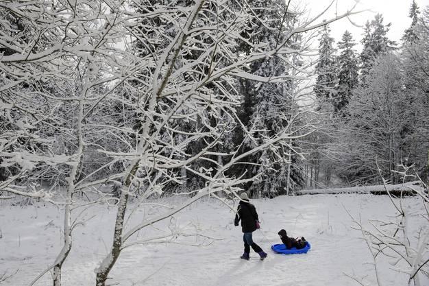 Bald soll der Winter auch im Flachland Einzug halten