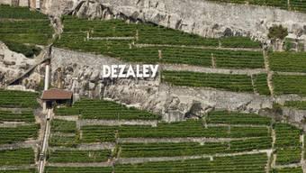 In der Nähe der Rebberge im Lavaux am Genfersee bei Dézaley sollen Luxuswohnungen entstehen. (Archivbild)